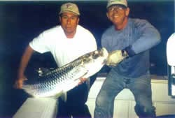miami tarpon fishing, miami fishing charters, charter fishing ,tarpon fishing, miami